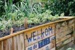 Welkom bij Mens en Tuin
