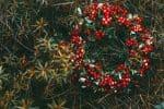 mens en tuin kerstkrans