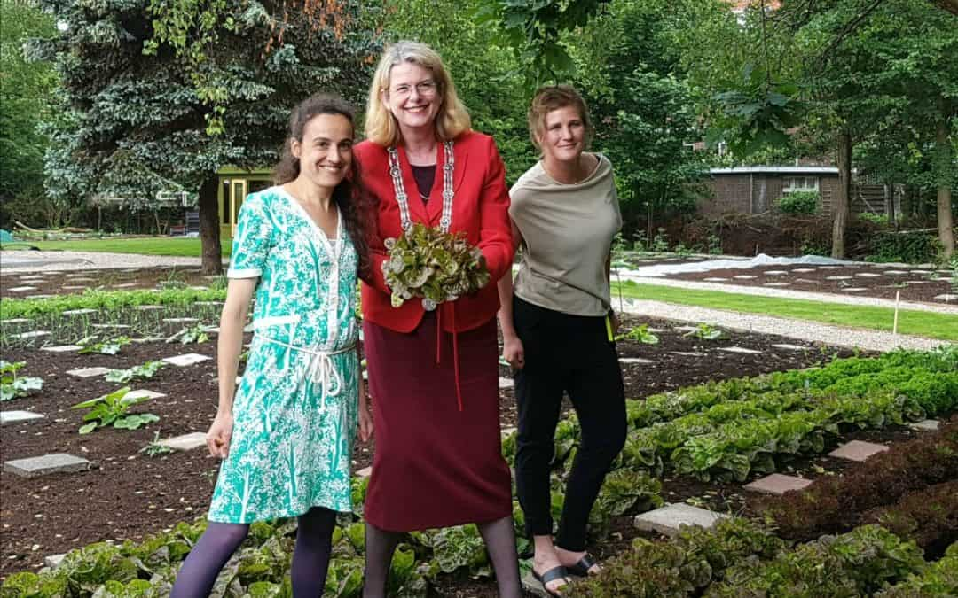 Greens in Westbroekpark is geopend!
