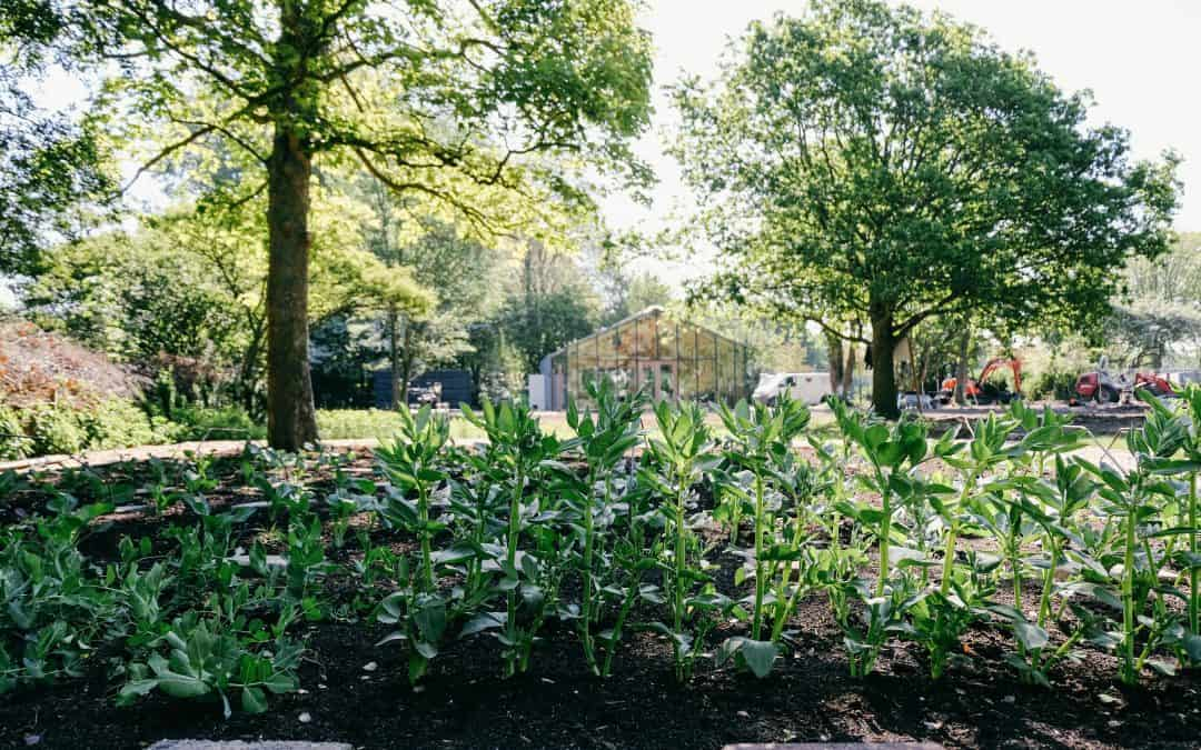 Crowdfunding Mens en Tuin in het Park