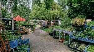 De ingang van de tuin van Mens en Tuin